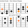 Whole half diminished scale guitar charts